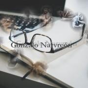 Gonzalo Narvreón