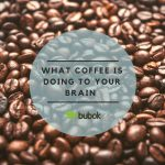 What is your cup of coffee doing to your brain?