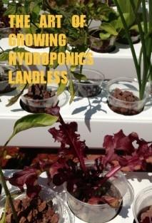 THE ART OF GROWING HYDROPONICS LANDLESS