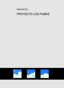 PROYECTO LOS PUMAS