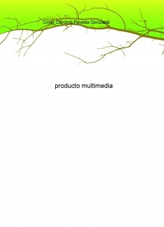 producto multimedia