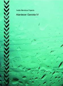 Atardecer Gaviota IV